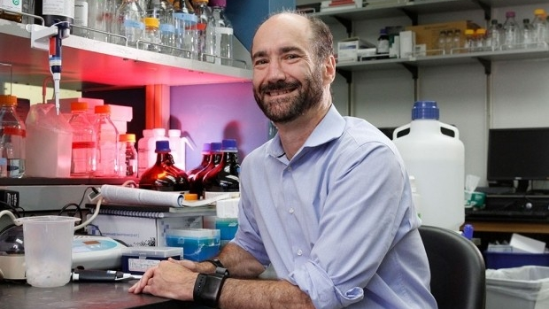 Researchers can forecast risk of deadly vascular condition from genome sequence