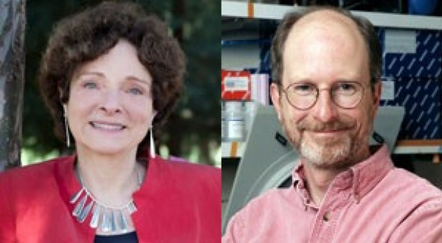 Professors Elected to National Academy of Sciences
